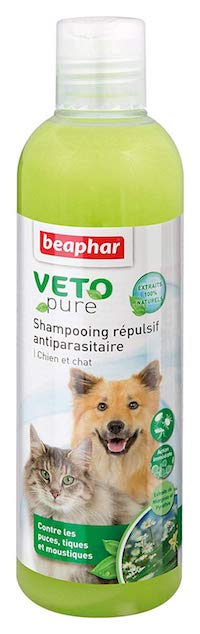 shampoing anti puce pour chat