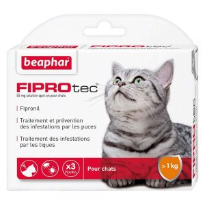 pipette anti puce pour chat